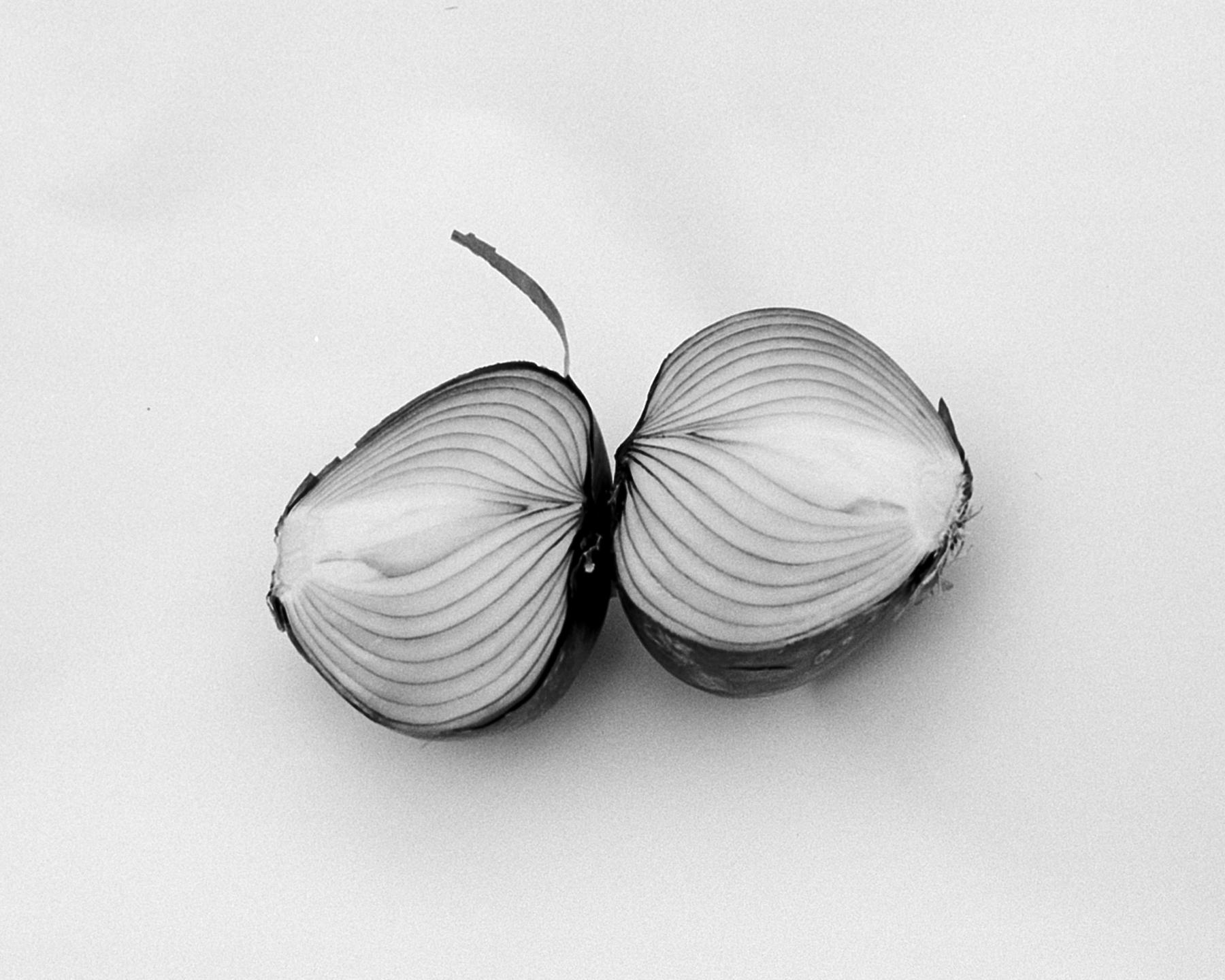 Split Onion